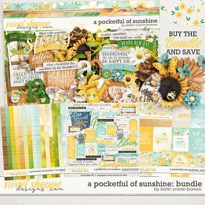 A Pocketful of Sunshine: Bundle by Kristin Cronin-Barrow