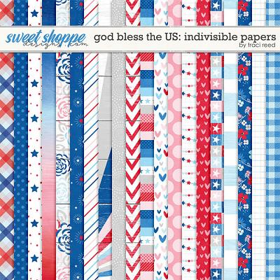 God Bless The US: Indivisible Papers by Traci Reed