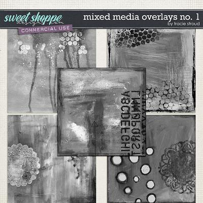 CU Mixed Media Overlays no. 1 by Tracie Stroud