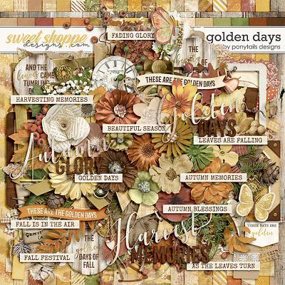Golden Days by Ponytails