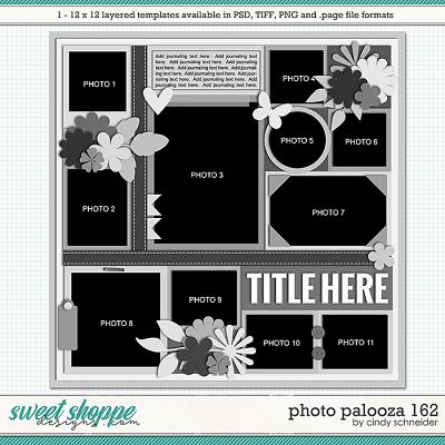 Cindy's Layered Templates - Photo Palooza 162 by Cindy Schneider