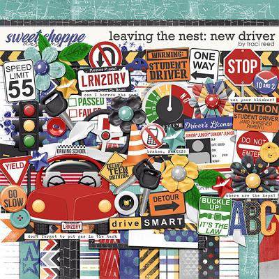 Leaving The Nest: New Driver by Traci Reed