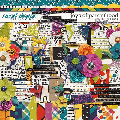 Joys of Parenthood by Erica Zane
