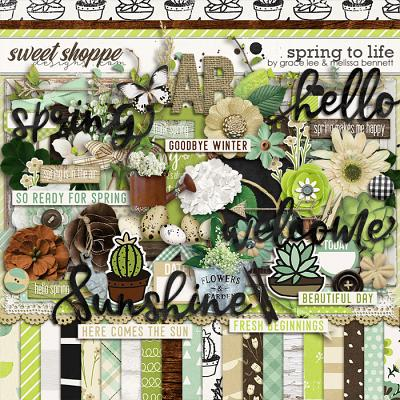 Spring to Life by Grace Lee and Melissa Bennett