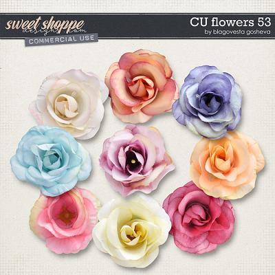 CU Flowers 53 by Blagovesta Gosheva