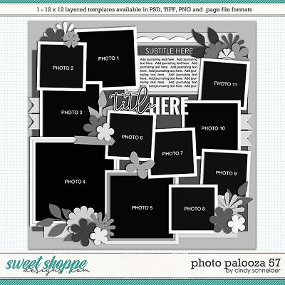 Cindy's Layered Templates - Photo Palooza 57 by Cindy Schneider