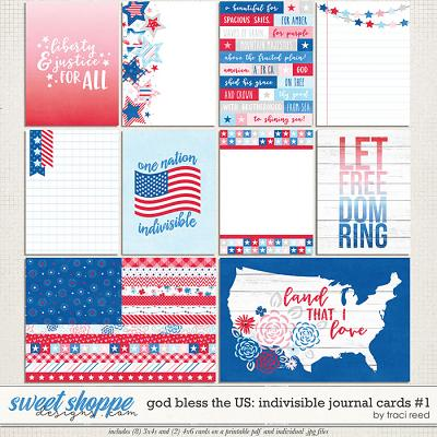God Bless The US: Indivisible Journal Cards #1 by Traci Reed