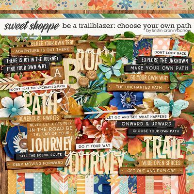Be a Trailblazer: Choose your own Path by Kristin Cronin-Barrow