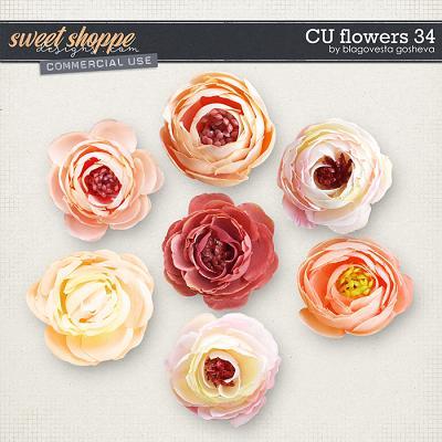 CU Flowers 34 by Blagovesta Gosheva