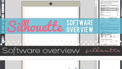 softwareoverview-silhouette