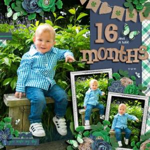 15-12-05-16-months-700