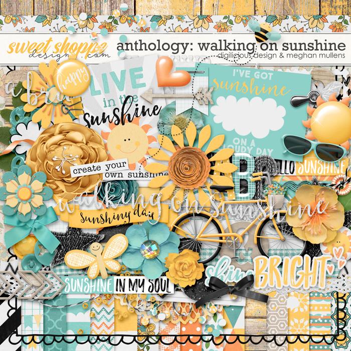 ddmm_anthology-sunshine_kitprev700